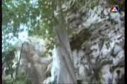 วังน้ำค้าง พิงกี้ สาวิกา วิน ธาวิน ละคร ช่อง 7