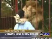 คลิป น่ารัก เป็นข่าว เฮฮา ขำ ขำขำ  สิงโต สัตว์เลี้ยงน่ารัก