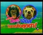 คลิป ขำกลิ้งลิงกับหมา  ปังกับเจมส์ pan james monkey dog ตอน ภารกิจสุดฮา