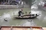 คลิป ใช้นกจับปลา จับปลาด้วยนก อย่างงี้ก็มีด้วย