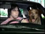 โฆษณา Hineken กับ น้องหมา