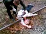 คลิป อุบัติเหตุ รถไฟ ตัดหน้า เละ ตาย ขาด น่ากลัว อันตราย