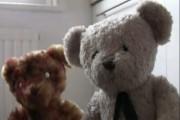 หมีซอมบี้ !! Dawn of the Ted