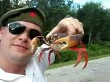 คลิป คำเตือน ปูโหด จมูก ก้ามปู จับปู สมน้ำหน้า ถ่ายคลิป crabs