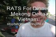 คลิป ตลาดขายเนื้อหนูพร้อมทำต่อหน้าให้ที่เวียดนาม