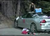 คลิป หมีหิว  บุกยึดรถหาของกิน