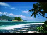 สวรรค์บนทราย - ระย้า และ ปะการัง