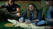 คลิป เรื่องเล่าเช้านี้ -  มาแปลก! ฝั่งเข็มจระเข้เผือก แก้กระดูกสันหลังคด