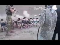 250ชีวิตทหาร สังเวยสงครามซีเรีย