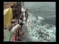 วิธีหาปลาขั้นเทพ ของ ฟิลิปปินส์