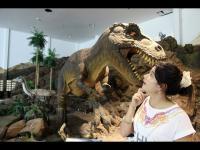 พิพิธภัณฑ์ไดโนเสาร์ ภูเวียง ไดโนเสาร์ ขอนแก่น