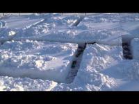 เจ้าตูบสนุกไปเลยเมื่อได้วิ่งเล่นในเขาวงกตที่ทำจากหิมะ