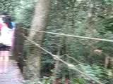คลิป 5/5 (ดีโพลมา 6158) วนอุทยานเขาใหญ่ อ.ปากช่อง โคราช