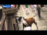เทศกาลวัวกระทิงในสเปน เมื่อกระทิงคลั่งไล่แทงนักวิ่ง