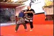 คลิป Pencak Silat Techniques