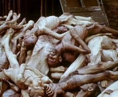lllll รูปความโหดร้ายในเยอรมัน..เมื่อฮิตเลอร์..ฆ่าล้างเผ่าพันธุ์..ยิว lllll