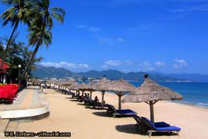 โลนลี่แพลนเน็ต ยก ชายหาด เวียดนาม ดีที่สุดในโลก