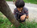 พ่อ เขมร ล่ามโซ่ ลูกชาย ประจาน หนีเรียน เล่นเกมส์