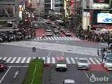 ญี่ปุ่น ข้ามถนน japan คนทำงาน