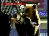 คลิป หมี สัตว์ ฟุตบอล น่ารัก