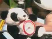 คลิป ไฮโร เพลง หมีแพนด้า thai song mv music video funny