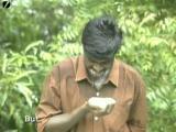 คลิป เรื่องแปลก คนกินอิฐที่อินเดีย
