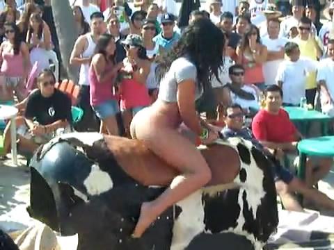 คลิป ขี่วัวเก่งจังเลยไม่ตกแต่น่ากลัว