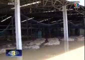 คลิป สลด! ขโมยยางพารา หลัง น้ำท่วมโรงงานยางพารา ของชาวญี่ปุ่น ที่สุราษฎร์ฯ