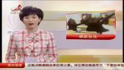คลิป นักเรียนเกาหลี หยอกล้อครูจนเป็นข่าว