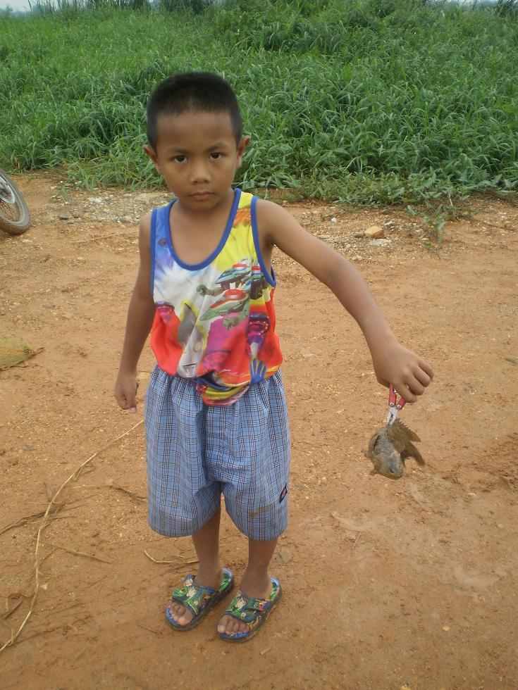แมงปอ13  mangpor13  จับปลา  เด็ก  สนุก   funny  joys