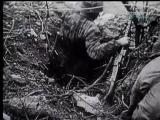 คลิป กองทัพ  สงคราม สงครามโลกครั้งที่2  ทหาร สมรภูมิ รบ อิตาลี่ เยอรมัน