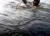 คลิป ปลาชะโดกระชากคัน ดูดี ๆ ตกปลา ฮา ๆ