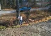 ตัดต้นไม้สุดซวย จอดรถถูกที่ แม่นจริงๆ ฮ่าฮ่าฮ่า