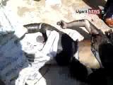 โคตรโหดทหารซีเรียเผาสดหมู่พลเรือนเสียชีวิตอย่างสุดทรมาน Ⓑ