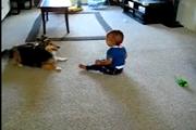 คลิป สุนัขเลี้ยงเด็ก เด็กหัวเราะ เด็กชอบสุนัข