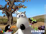 Bernard ตอน เล่นฟุตบอล ( การ์ตูนตลกจ้าๆ )