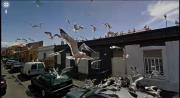Google Streetview ภาพสวยๆ โลก