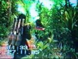 ทหารไทย รบ ทหาร กองทัพไทย สมรภูมิ สดุดี ทหารพราน นักรบดำ