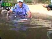 ปลา ตกปลา น่ากลัว แปลก สัตว์ fish