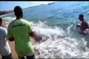 ปลาพญานาคโผล่ชายหาดเม็กซิโก