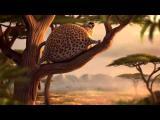 คลิป สุดฮาปนน่ารัก การ์ตูนแอนิเมชั่น สัตว์ป่าตัวพอง กลายเป็นบอลลูน