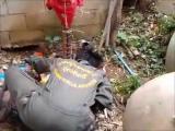 คลิป กู้ภัยวัดหมอนไม้ จับงูแม่ลูกอ่อน มีลูกกว่า 30ตัว!