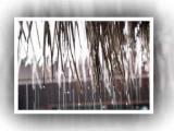 คลิป เม็ดฝนทิ้มใจ  ยิญชัย  ปาหณัณ