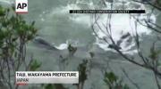 ชาวประมง ล่า ปลาโลมา ญี่ปุ่น