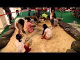 คลิป มหัศจรรย์ไดโนเสาร์ประเทศไทย ขอนแก่น 2014 Thailand Amazing Dinosaur Khonkaen เซ็นทรัล ขอนแก่น 2557