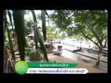 ไทยเฮิร์บ คลินิกการแพทย์แผนไทยประยุกต์
