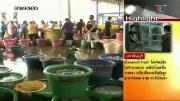 คลิป เรื่องเล่าเช้านี้ - สื่อผู้ดีตีข่าวไทยขายกุ้งจากหยาดเหงื่อแรงงานทาส
