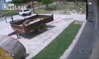 คลิป อินเดีย เขา ขโมย วัว ขึ้นรถเก๋ง กันแบบนี้เลย