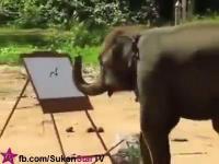 ช้างไทย ไม่แพ้ชาติใดในโลก