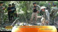 คลิป เรื่องเล่าเช้านี้ - พบลูกช้างแรกเกิดตายไม่ทราบสาเหตุกลางป่ากาญจนบุรี